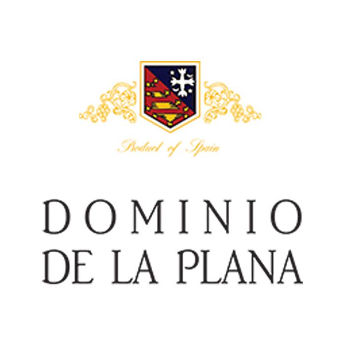 Logotipo - Dominio de la Plana
