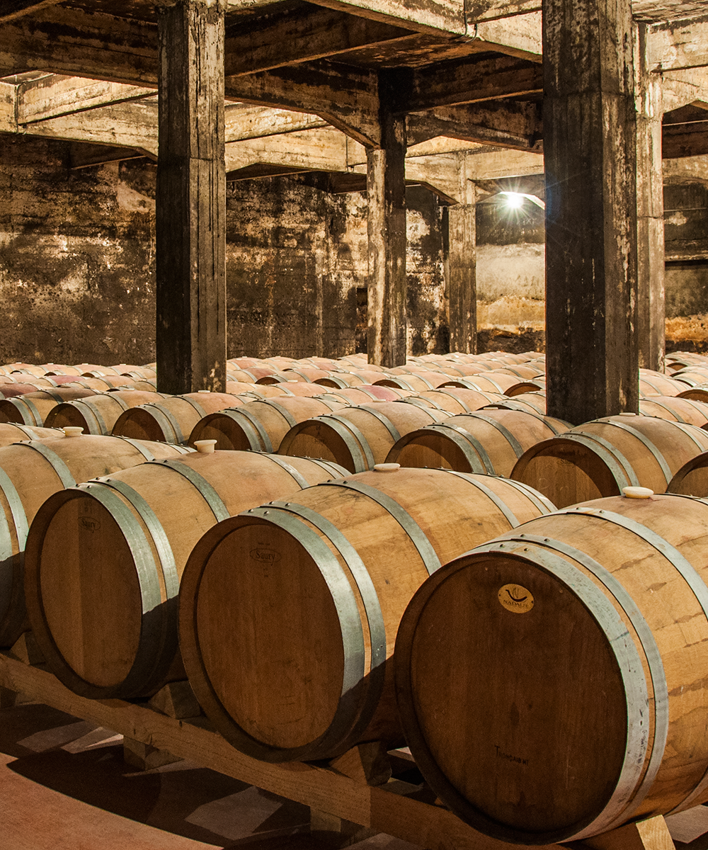 Wine Tourism - Bodegas Berceo