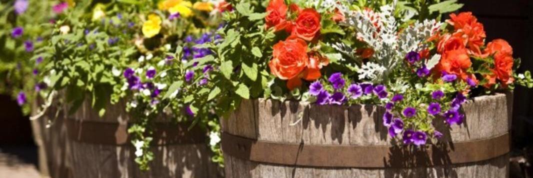 10 formas de reutilizar una barrica