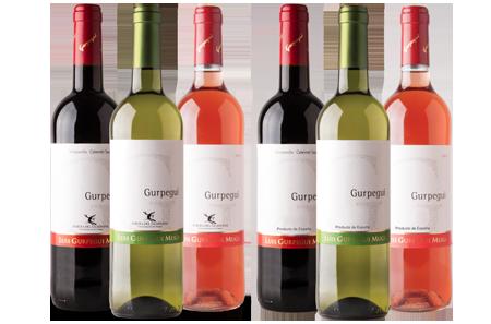 Gurpegui - DO Ribera del Guadiana y Vinos de España