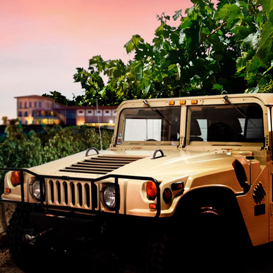 Recorre los viñedos de Manzanos Wines