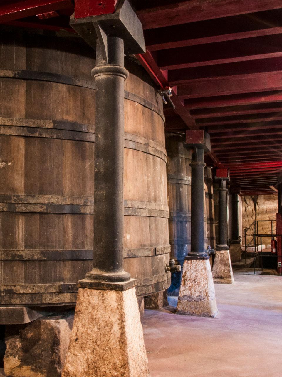 Presentación Manzanos Wines Park