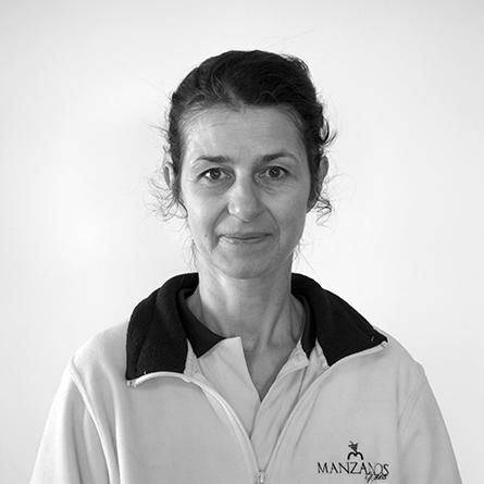 Daniela Maftei